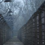 Pour Rappel : De fausses victimes de l'holocauste inventées pour détourner de l'argent