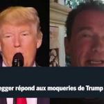 Trump se moque de Schwarzenegger, celui-ci lui propose d'échanger leur métier