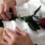 Suisse : Suicide assisté, jusqu'ou peut-on aller ?