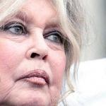 Brigitte Bardot : «Nicolas Hulot est un vendu et un lâche !»