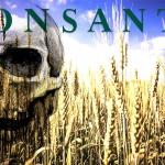 Santé publique : Les 7 péchés capitaux de Monsanto
