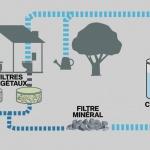 Environnement :  Des lombrics pour épurer les eaux usées d'un immeuble genevois